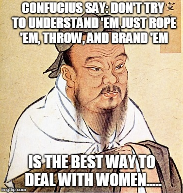 Rawhide Confucius | CONFUCIUS SAY: DON'T TRY TO UNDERSTAND 'EM JUST ROPE 'EM, THROW, AND BRAND 'EM IS THE BEST WAY TO DEAL WITH WOMEN..... | image tagged in confucius says,sexism,philosophy,funny,women | made w/ Imgflip meme maker