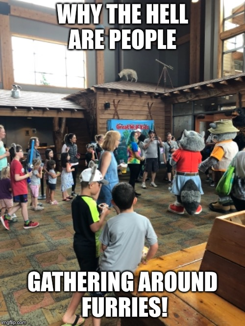 Begone furry  | WHY THE HELL ARE PEOPLE GATHERING AROUND FURRIES! | image tagged in just why | made w/ Imgflip meme maker