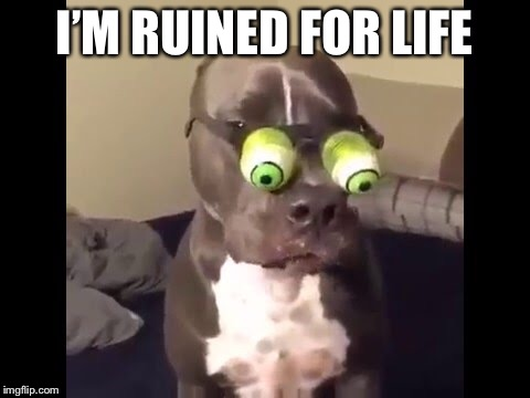 I'M RUINED FOR LIFE | made w/ Imgflip meme maker