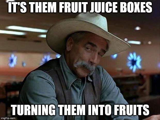 special kind of stupid | IT'S THEM FRUIT JUICE BOXES TURNING THEM INTO FRUITS | image tagged in special kind of stupid | made w/ Imgflip meme maker