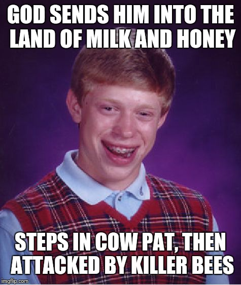 Bad Luck Brian Meme | GOD SENDS HIM INTO THE LAND OF MILK AND HONEY STEPS IN COW PAT, THEN ATTACKED BY KILLER BEES | image tagged in memes,bad luck brian | made w/ Imgflip meme maker