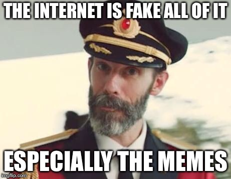 Captain Obvious | THE INTERNET IS FAKE ALL OF IT ESPECIALLY THE MEMES | image tagged in captain obvious | made w/ Imgflip meme maker