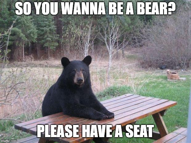 Bear of bad news | SO YOU WANNA BE A BEAR? PLEASE HAVE A SEAT | image tagged in bear of bad news | made w/ Imgflip meme maker
