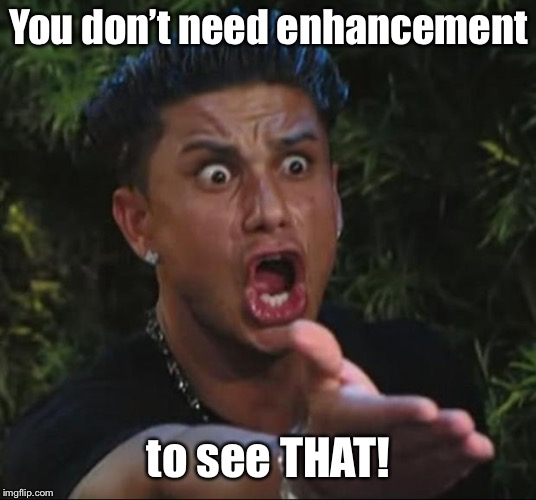 DJ Pauly D Meme | You don't need enhancement to see THAT! | image tagged in memes,dj pauly d | made w/ Imgflip meme maker