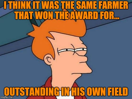 Futurama Fry Meme | I THINK IT WAS THE SAME FARMER THAT WON THE AWARD FOR... OUTSTANDING IN HIS OWN FIELD | image tagged in memes,futurama fry | made w/ Imgflip meme maker