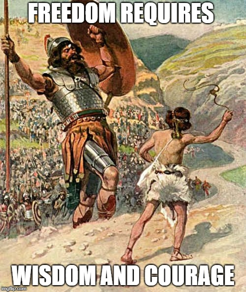 David and Goliath | FREEDOM REQUIRES WISDOM AND COURAGE | image tagged in david and goliath | made w/ Imgflip meme maker