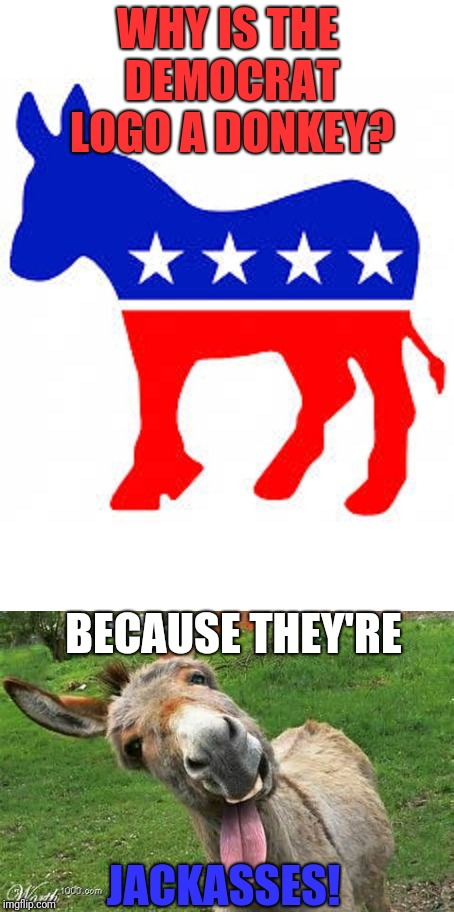 WHY IS THE DEMOCRAT LOGO A DONKEY? BECAUSE THEY'RE JACKASSES! | image tagged in democrat | made w/ Imgflip meme maker