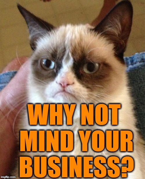 Grumpy Cat Meme | WHY NOT MIND YOUR BUSINESS? | image tagged in memes,grumpy cat | made w/ Imgflip meme maker