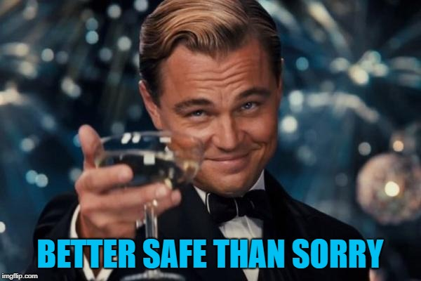 Leonardo Dicaprio Cheers Meme | BETTER SAFE THAN SORRY | image tagged in memes,leonardo dicaprio cheers | made w/ Imgflip meme maker