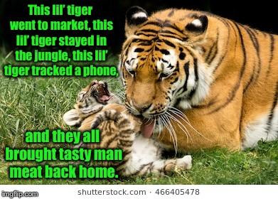 Hey!  Human nursery rhymes are a bit dark & morbid too | This lil' tiger went to market, this lil' tiger stayed in the jungle, this lil' tiger tracked a phone, and they all brought tasty man meat b | image tagged in memes,tiger week 2018,tiger rhymes,funny memes,mama tiger,baby tiger | made w/ Imgflip meme maker