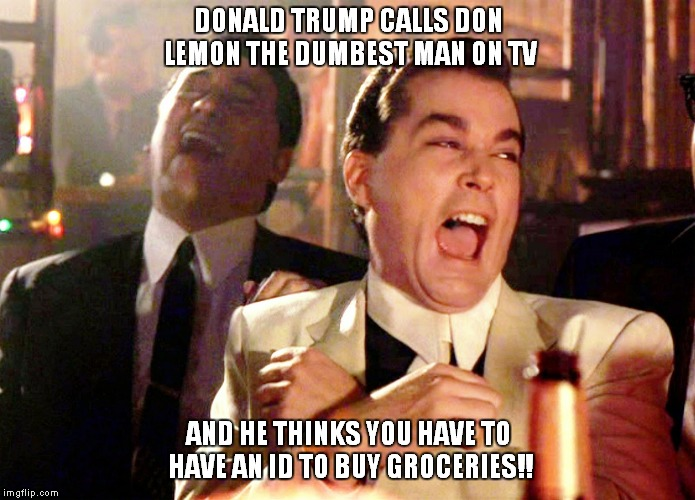 Irony deficiency? | DONALD TRUMP CALLS DON LEMON THE DUMBEST MAN ON TV AND HE THINKS YOU HAVE TO HAVE AN ID TO BUY GROCERIES!! | image tagged in memes,good fellas hilarious | made w/ Imgflip meme maker