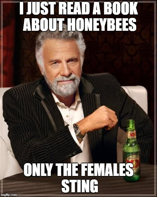 The Most Interesting Man In The World Meme | I JUST READ A BOOK ABOUT HONEYBEES ONLY THE FEMALES STING | image tagged in memes,the most interesting man in the world | made w/ Imgflip meme maker