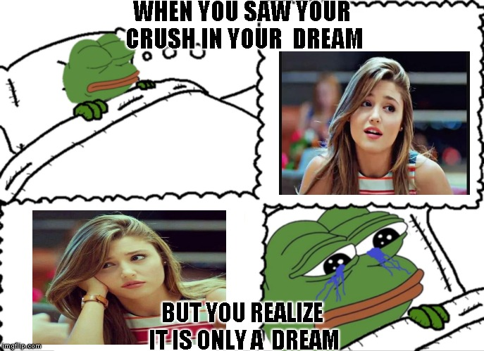 feels bad man frog crushed dreams | WHEN YOU SAW YOUR CRUSH IN YOUR DREAM BUT YOU REALIZE IT IS ONLY A DREAM | image tagged in feels bad man frog crushed dreams | made w/ Imgflip meme maker