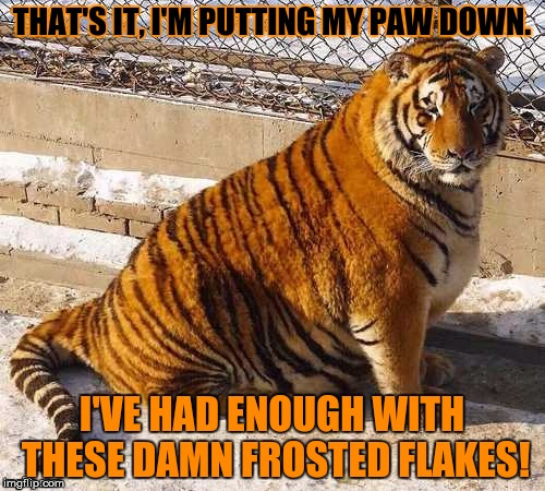 Fat Tony - Tiger Week 2018, July 29 - August 5, a TigerLegend1046 event | H | image tagged in memes,tiger week,tiger week 2018,tony the tiger,frosted flakes,fat | made w/ Imgflip meme maker