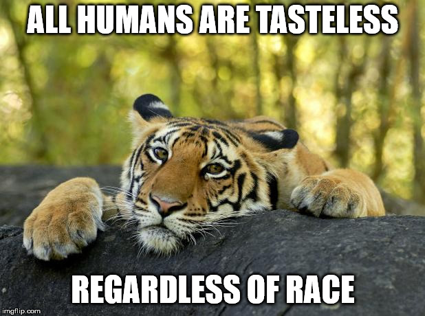 Confession Tiger | ALL HUMANS ARE TASTELESS REGARDLESS OF RACE | image tagged in confession tiger | made w/ Imgflip meme maker