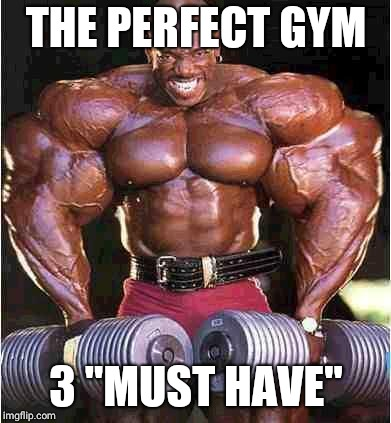 "Tyrone Muscle | THE PERFECT GYM 3 ""MUST HAVE"" 