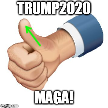 up vote | TRUMP2020 MAGA! | image tagged in up vote | made w/ Imgflip meme maker