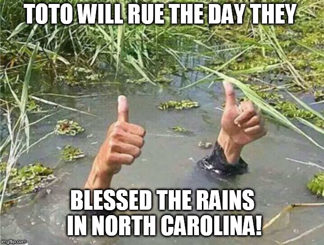 Drowning Thumbs Up | TOTO WILL RUE THE DAY THEY BLESSED THE RAINS IN NORTH CAROLINA! | image tagged in drowning thumbs up | made w/ Imgflip meme maker