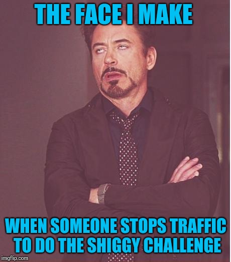 Face You Make Robert Downey Jr Meme | THE FACE I MAKE WHEN SOMEONE STOPS TRAFFIC TO DO THE SHIGGY CHALLENGE | image tagged in memes,face you make robert downey jr | made w/ Imgflip meme maker