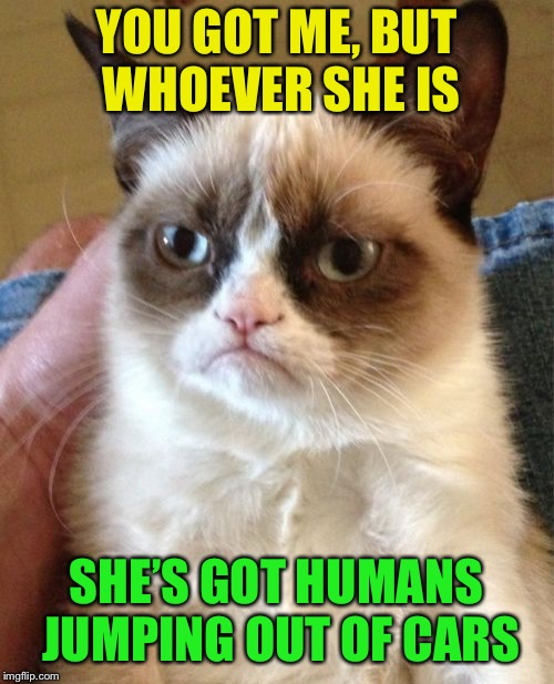 Grumpy Cat Meme | YOU GOT ME, BUT WHOEVER SHE IS SHE'S GOT HUMANS JUMPING OUT OF CARS | image tagged in memes,grumpy cat | made w/ Imgflip meme maker