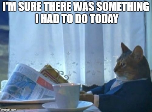 I Should Buy A Boat Cat Meme | I'M SURE THERE WAS SOMETHING I HAD TO DO TODAY | image tagged in memes,i should buy a boat cat | made w/ Imgflip meme maker
