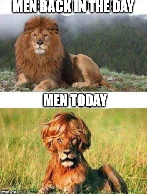 Men: then and now | MEN BACK IN THE DAY MEN TODAY | image tagged in men | made w/ Imgflip meme maker