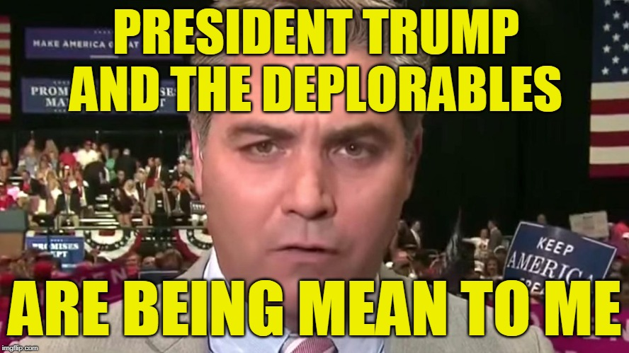 Free Press Martyr | PRESIDENT TRUMP AND THE DEPLORABLES ARE BEING MEAN TO ME | image tagged in jim acosta,cnn fake news,president trump,deplorables | made w/ Imgflip meme maker