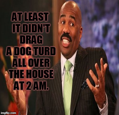 AT LEAST IT DIDN'T DRAG A DOG TURD ALL OVER THE HOUSE AT 2 AM. | made w/ Imgflip meme maker