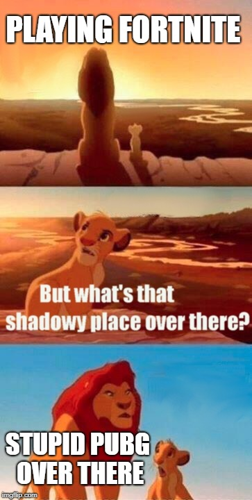Simba Shadowy Place | PLAYING FORTNITE STUPID PUBG OVER THERE | image tagged in memes,simba shadowy place | made w/ Imgflip meme maker