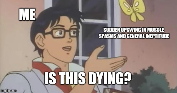 is this a pigeon | ME SUDDEN UPSWING IN MUSCLE SPASMS AND GENERAL INEPTITUDE IS THIS DYING? | image tagged in is this a pigeon | made w/ Imgflip meme maker