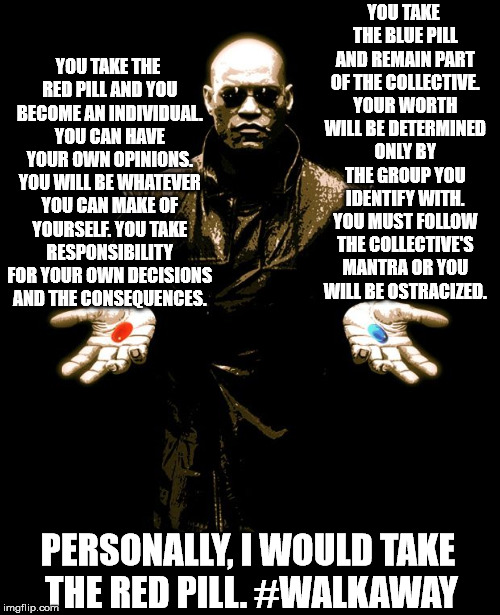 Why is this so hard to understand? | YOU TAKE THE BLUE PILL AND REMAIN PART OF THE COLLECTIVE. YOUR WORTH WILL BE DETERMINED ONLY BY THE GROUP YOU IDENTIFY WITH. YOU MUST FOLLOW | image tagged in morphues red pill blue pill | made w/ Imgflip meme maker