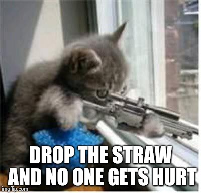 cats with guns | DROP THE STRAW AND NO ONE GETS HURT | image tagged in cats with guns | made w/ Imgflip meme maker