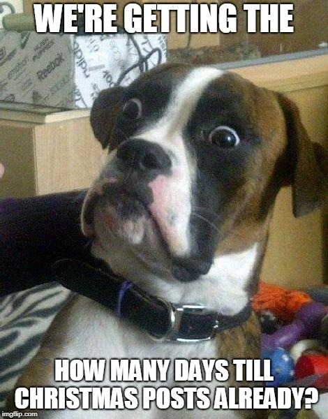 Surprised Dog | WE'RE GETTING THE HOW MANY DAYS TILL CHRISTMAS POSTS ALREADY? | image tagged in surprised dog | made w/ Imgflip meme maker