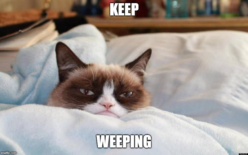 grumpy cat bed | KEEP WEEPING | image tagged in grumpy cat bed | made w/ Imgflip meme maker