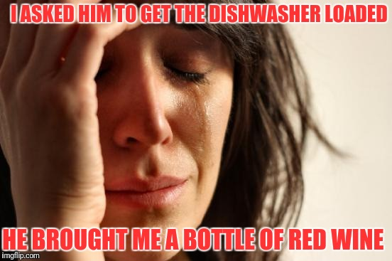 First World Problems Meme | I ASKED HIM TO GET THE DISHWASHER LOADED HE BROUGHT ME A BOTTLE OF RED WINE | image tagged in memes,first world problems | made w/ Imgflip meme maker