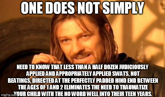 One Does Not Simply Meme | ONE DOES NOT SIMPLY NEED TO KNOW THAT LESS THAN A HALF DOZEN JUDICIOUSLY APPLIED AND APPROPRIATELY APPLIED SWATS, NOT BEATINGS, DIRECTED AT  | image tagged in memes,one does not simply | made w/ Imgflip meme maker