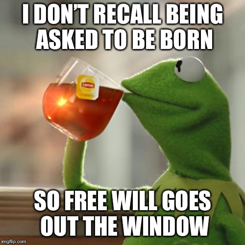 But Thats None Of My Business Meme | I DON'T RECALL BEING ASKED TO BE BORN SO FREE WILL GOES OUT THE WINDOW | image tagged in memes,but thats none of my business,kermit the frog | made w/ Imgflip meme maker
