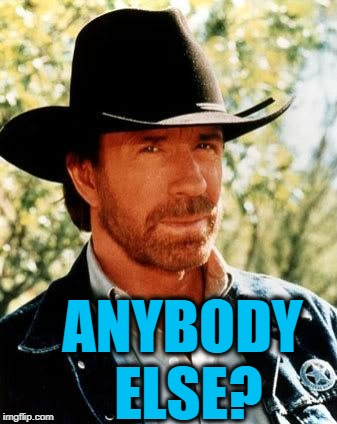 Chuck Norris Meme | ANYBODY ELSE? | image tagged in memes,chuck norris | made w/ Imgflip meme maker