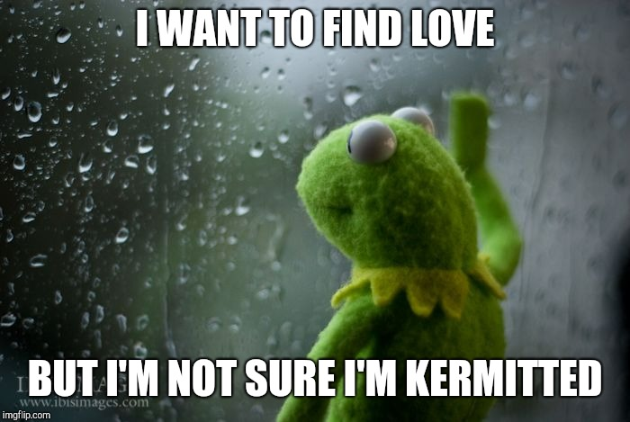 Where's Miss Piggy when you need her? | I WANT TO FIND LOVE BUT I'M NOT SURE I'M KERMITTED | image tagged in kermit window,bad pun,kermit the frog | made w/ Imgflip meme maker