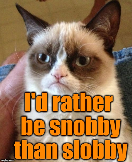 Grumpy Cat Meme | I'd rather be snobby than slobby | image tagged in memes,grumpy cat | made w/ Imgflip meme maker