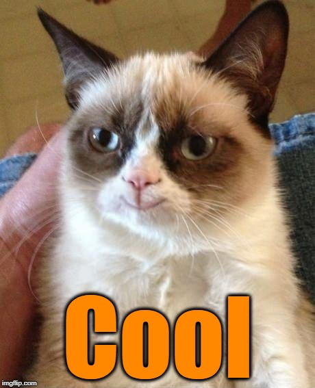 Grumpy Cat Smile | Cool | image tagged in grumpy cat smile | made w/ Imgflip meme maker