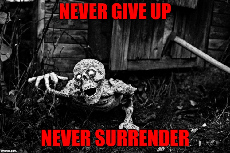 NEVER GIVE UP NEVER SURRENDER | made w/ Imgflip meme maker