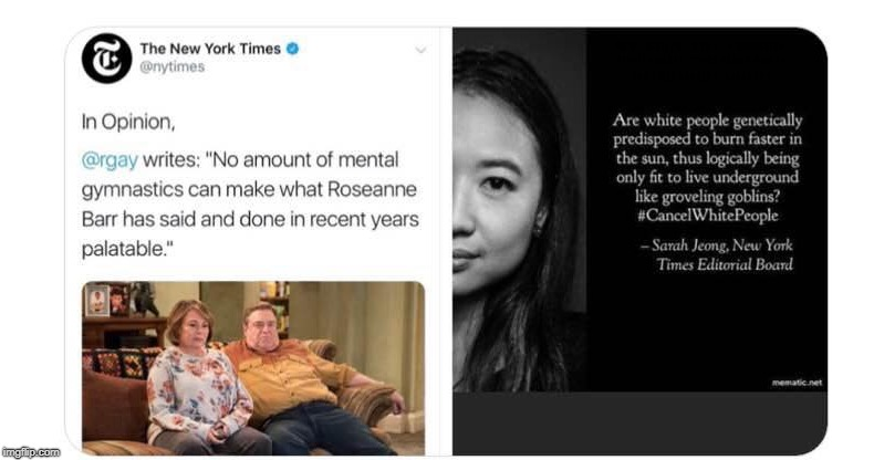"But she was ""counter trolling"" of course that is not the same thing! 