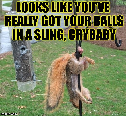 LOOKS LIKE YOU'VE REALLY GOT YOUR BALLS IN A SLING, CRYBABY | made w/ Imgflip meme maker