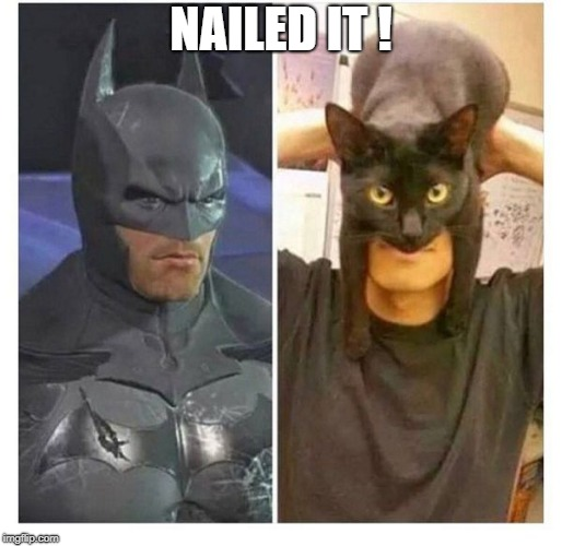 Nailed it | NAILED IT ! | image tagged in batman,memes,cats | made w/ Imgflip meme maker