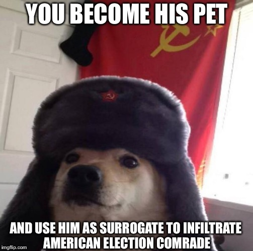 Russian Doge | YOU BECOME HIS PET AND USE HIM AS SURROGATE TO INFILTRATE AMERICAN ELECTION COMRADE | image tagged in russian doge | made w/ Imgflip meme maker