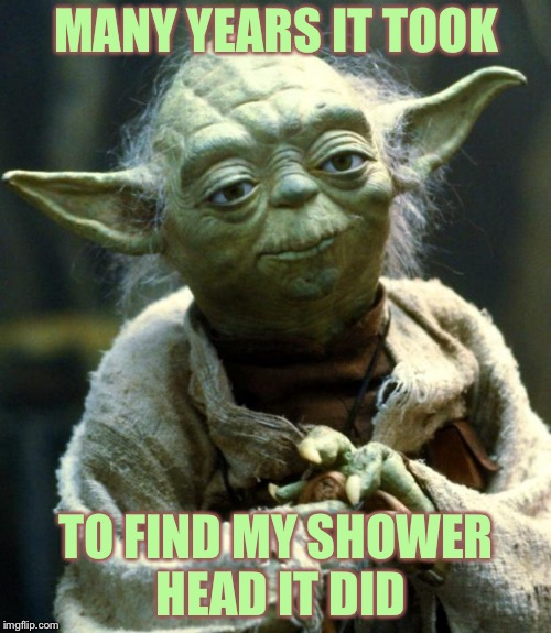 Star Wars Yoda Meme | MANY YEARS IT TOOK TO FIND MY SHOWER HEAD IT DID | image tagged in memes,star wars yoda | made w/ Imgflip meme maker