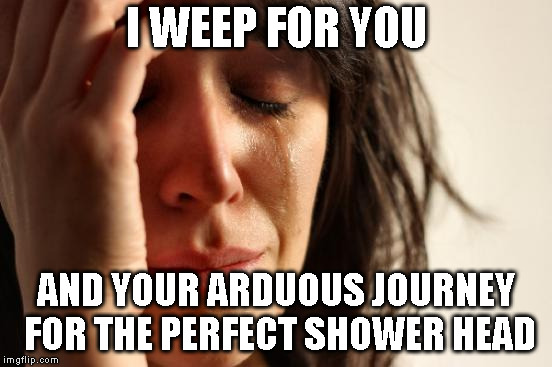 First World Problems Meme | I WEEP FOR YOU AND YOUR ARDUOUS JOURNEY FOR THE PERFECT SHOWER HEAD | image tagged in memes,first world problems | made w/ Imgflip meme maker