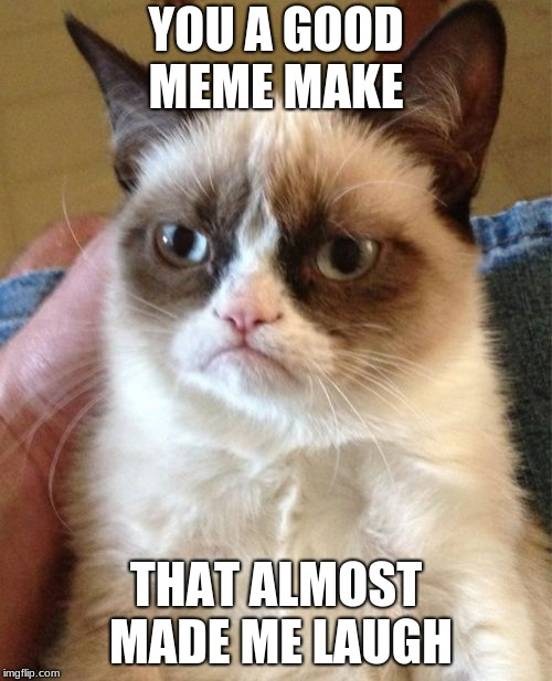 Grumpy Cat Meme | YOU A GOOD MEME MAKE THAT ALMOST MADE ME LAUGH | image tagged in memes,grumpy cat | made w/ Imgflip meme maker
