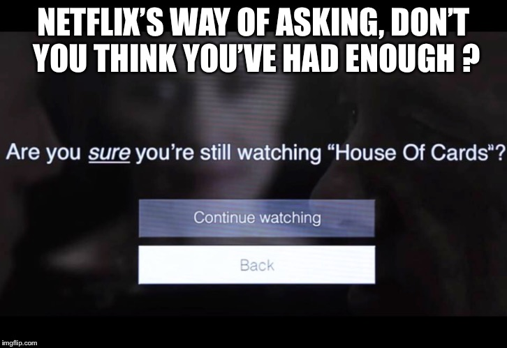 NETFLIX'S WAY OF ASKING, DON'T YOU THINK YOU'VE HAD ENOUGH ? | image tagged in memes | made w/ Imgflip meme maker